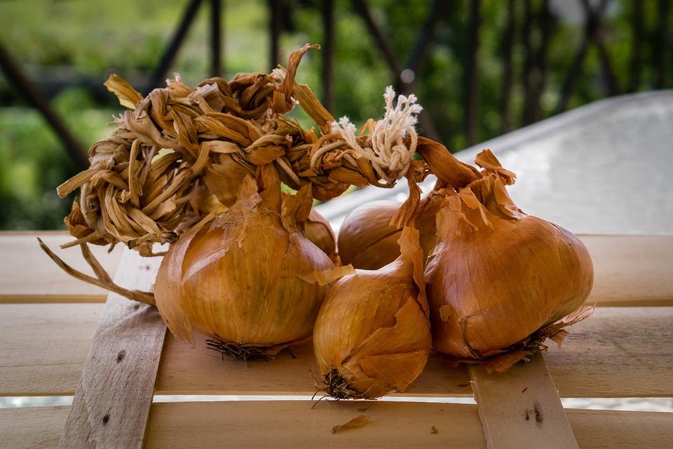 Onions, Onion Bulbs, Bunch, Vegetable, Food, Natural
