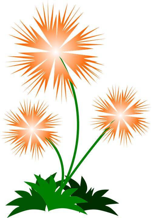 Flower, Abstract, Spring, Orange, Pointed, Spiky