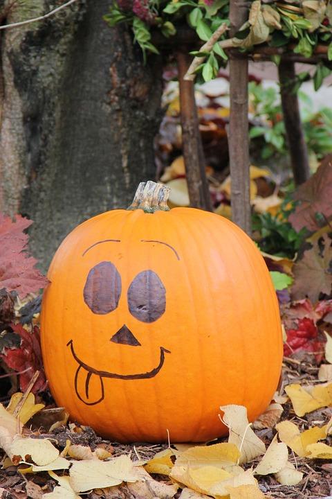 Pumpkin, Halloween, Autumn, Orange