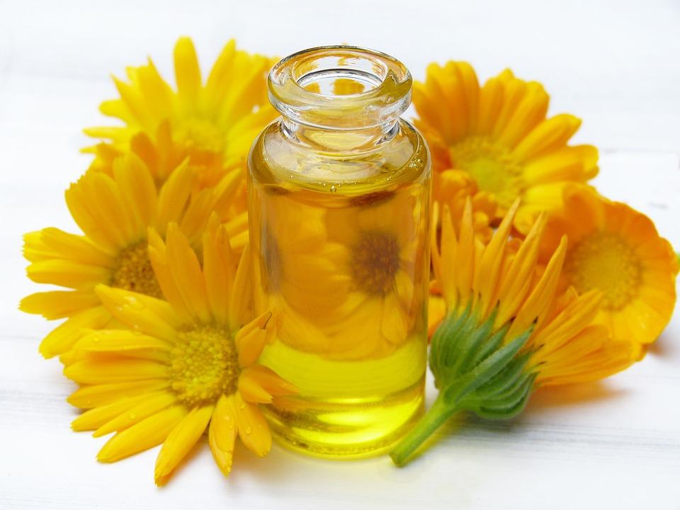 Free photo Orange Calendula Marigold Vial Glass Flowers Oil - Max Pixel
