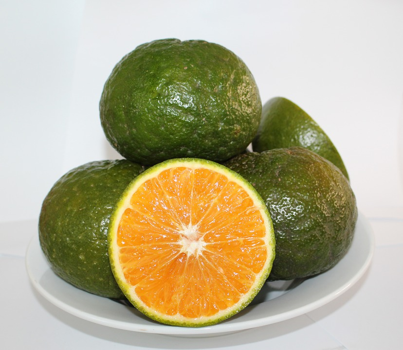 Cam Sành, Orange, Oranges