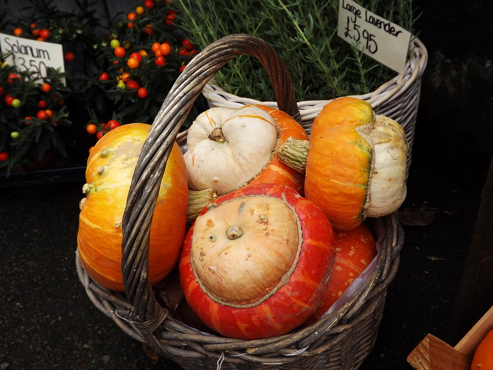 Orange, Autumn, Halloween, Holiday, Gourds