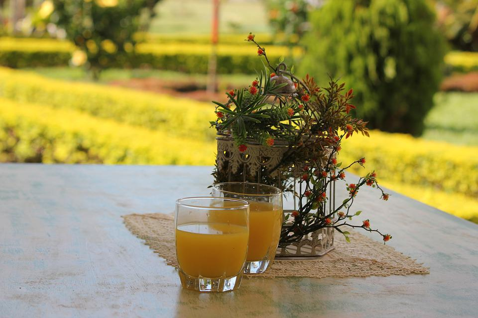 Nature, Orange, Breakfast, Juice, Fruit, Garden, Food