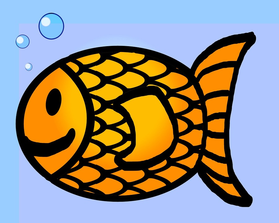 Goldfish, Fish, Outline, Drawing, Line, Orange, Bubbles