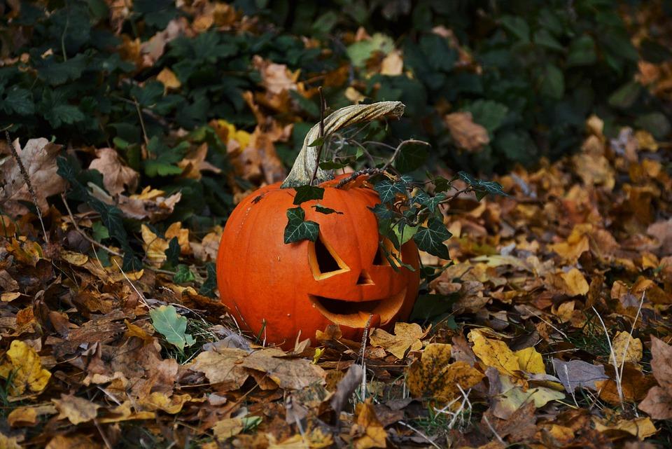 Pumpkin, Halloween, Autumn, Orange, Carving, Decoration