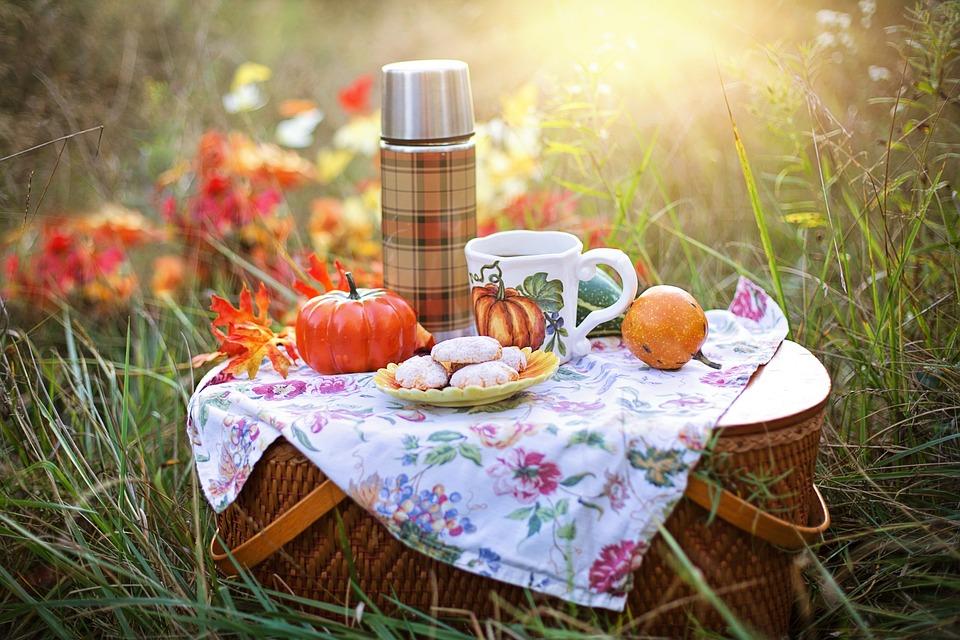 Autumn, Tea, Fall, Picnic, Drink, Orange, Cookies