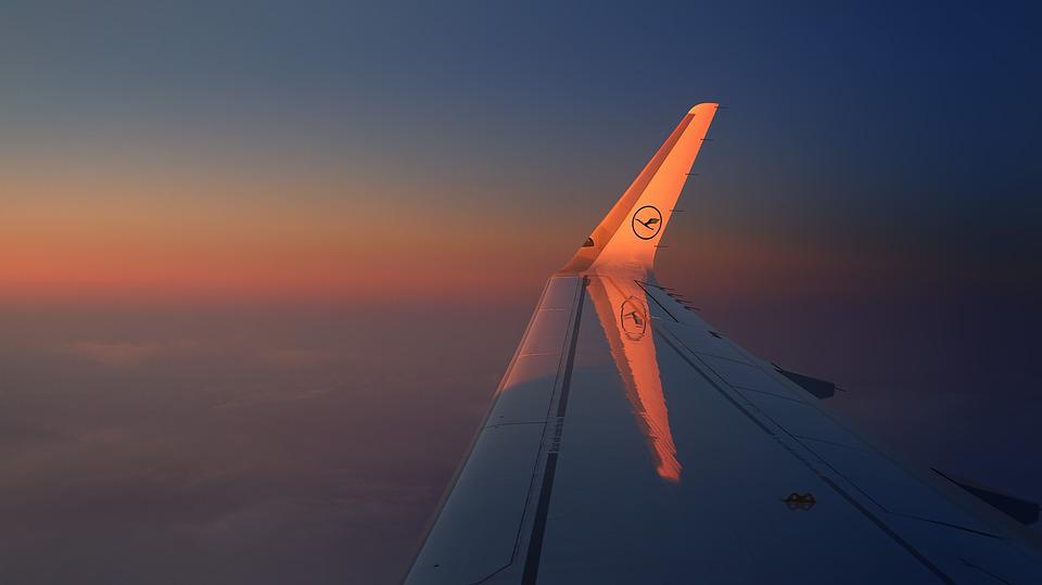 Travel, Sky, Wing, Freedom, Evening Sun, Orange