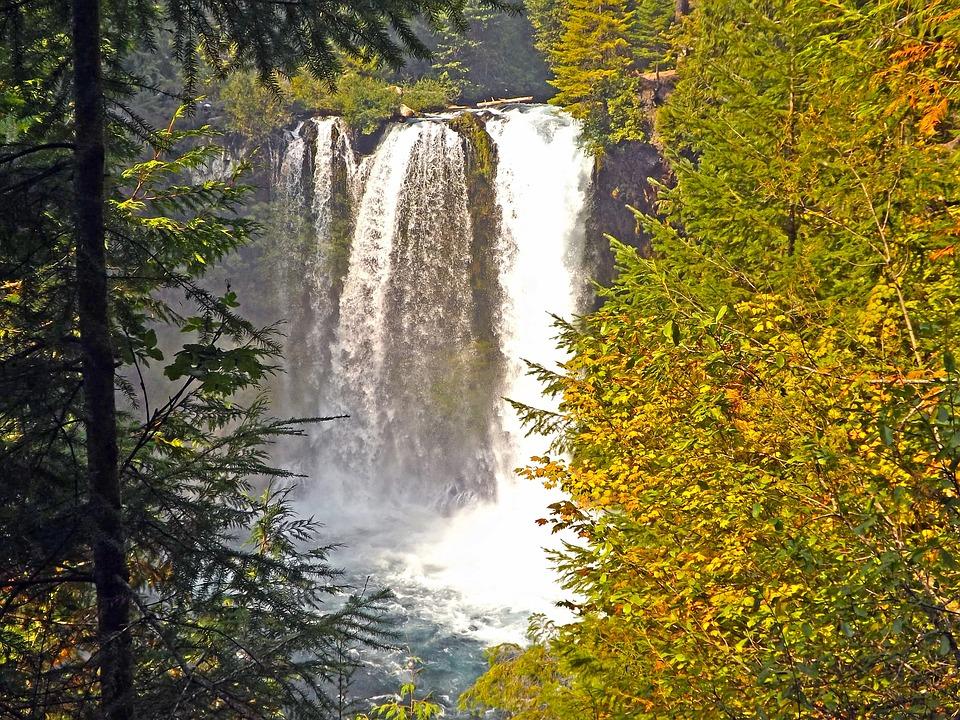 Waterfalls, Mckenzie River, Oregon, Landscape, Nature