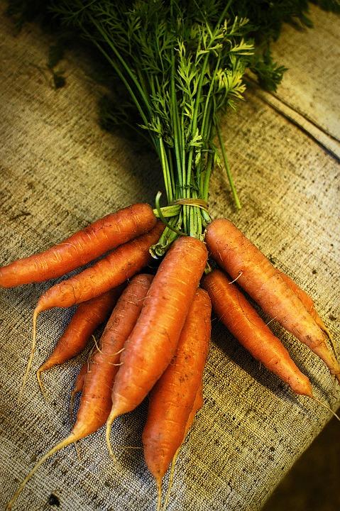 Carrot, Food, Farm, Organic