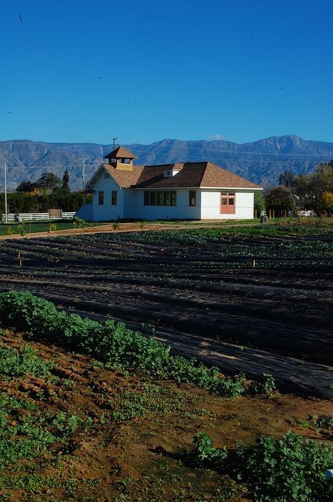 Farm, California, Organic Farming