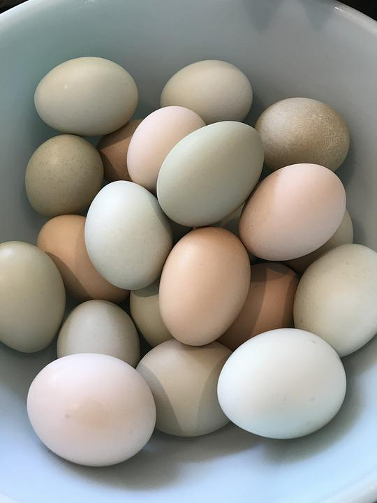 Eggs, Pastel, Homegrown, Organic, Food