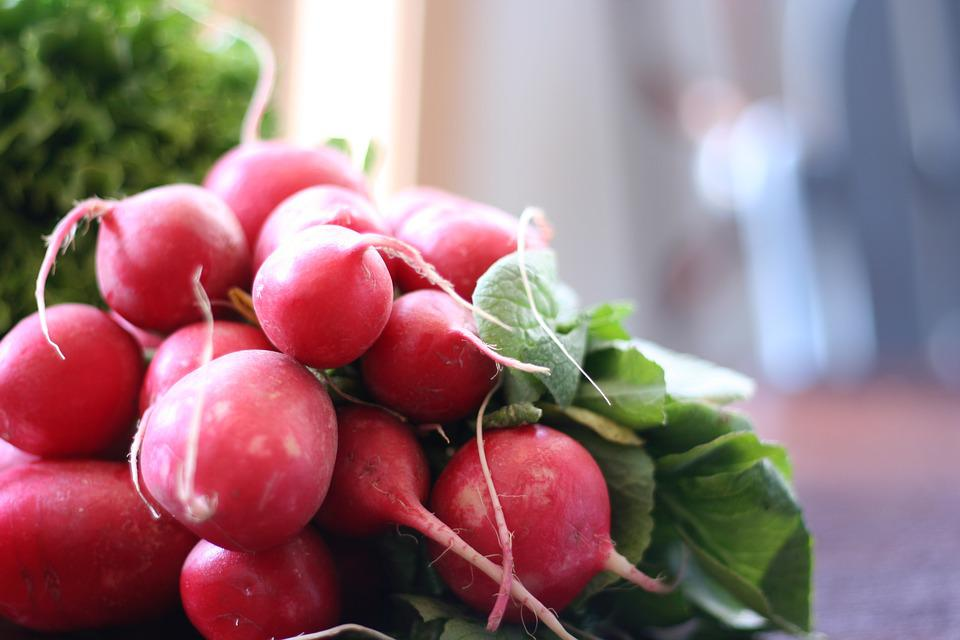 Radish, Vegetable, Fresh, Organic, Red, Natural, Plant