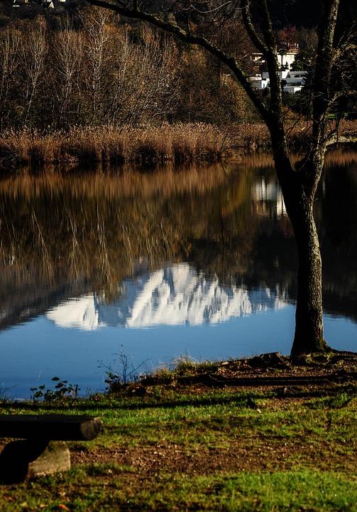 Origlio, Lake, Reflections, Landscape, Switzerland