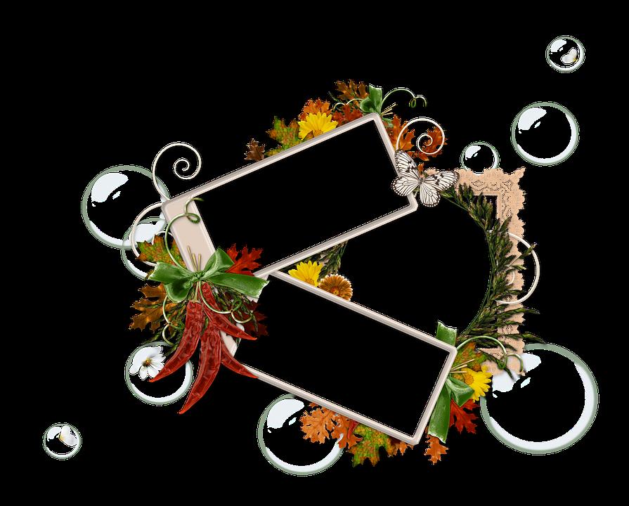 Autumn, Scrapbooking, Cluster, Ornament, Blank, Design