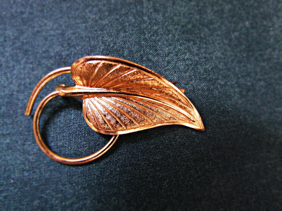 Ornament, Brooch, Leaf, Metal, Feather