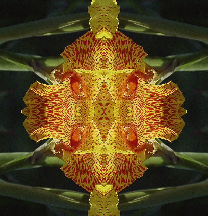 Kaleidoscope, Graphics, Composition, Ornament