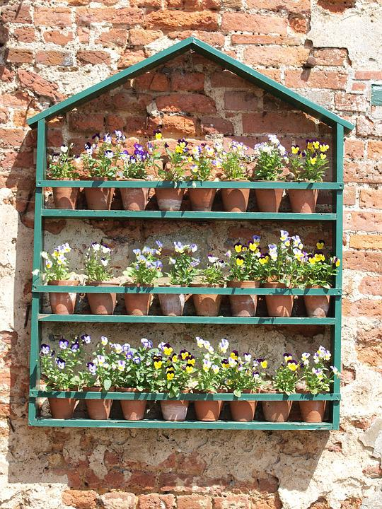 Merveilleux Flowers, Garden, Shelves, Ornament