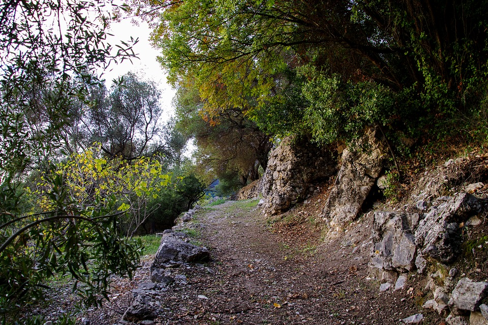 Trail, Nature, Hiking, Orsomarso, Santa Maria Mercuri