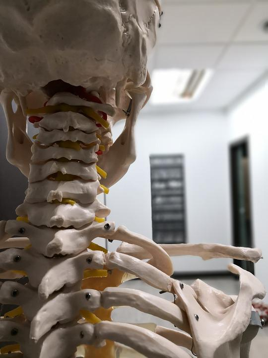 Physiotherapy, Osteopathy, Pilates, Yoga