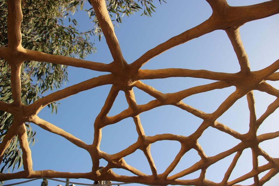 Canopy, Sky, Outdoor