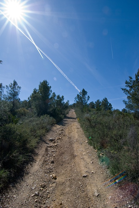 Trail, Track, Sun, Sky, Nature, Summer, Outdoor, Path