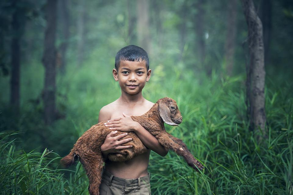 Boys, Outdoor, Thailand, Baby, Mammal, Indonesia