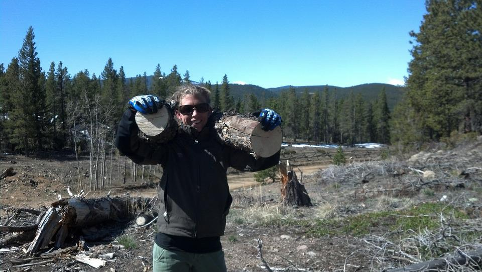 Firewood, Woman, Outdoor, Female