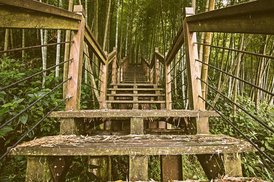 Wood, Wooden, Outdoor, Old, Building, Nature, Stairs