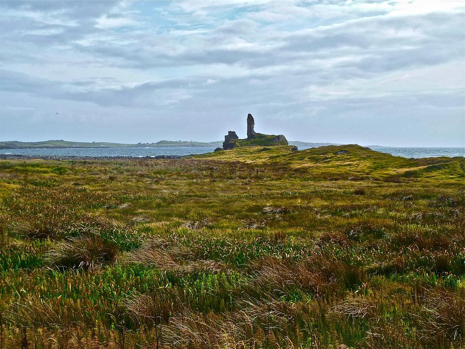 Heather, Ruins, Moor, Scotland, Outdoors, Abbey