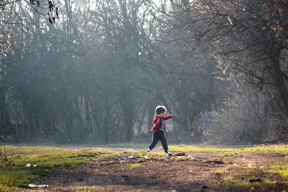 Child, Play, Children Playing, Boy, Nature, Outdoors