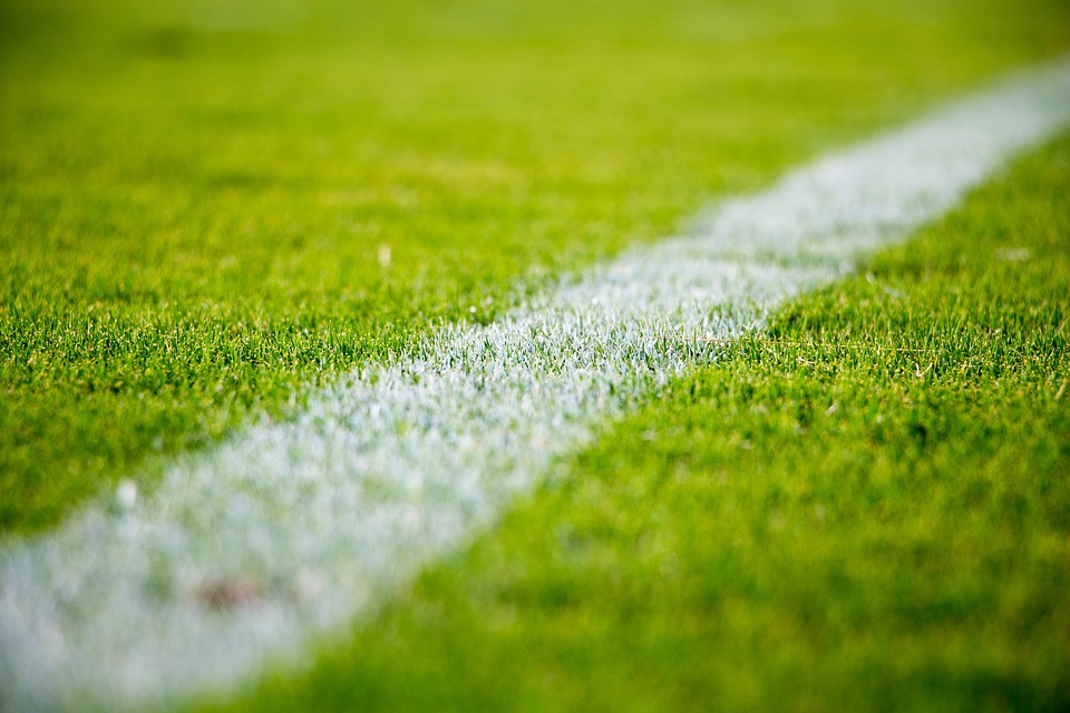 Grass, Lawn, Field, Sports, Soccer, Football, Outdoors