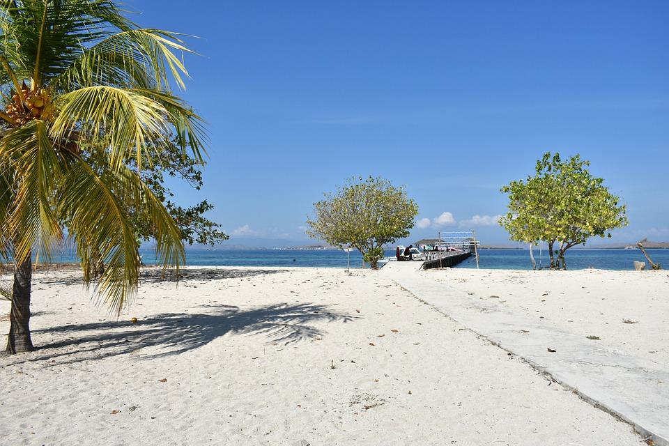 Beach, Island, Coconut, Trees, Sea, Ocean, Outdoors
