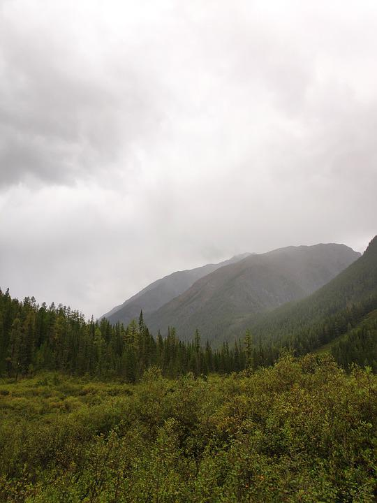 Mountains, Trees, Forest, Altai, Clouds, Outdoors
