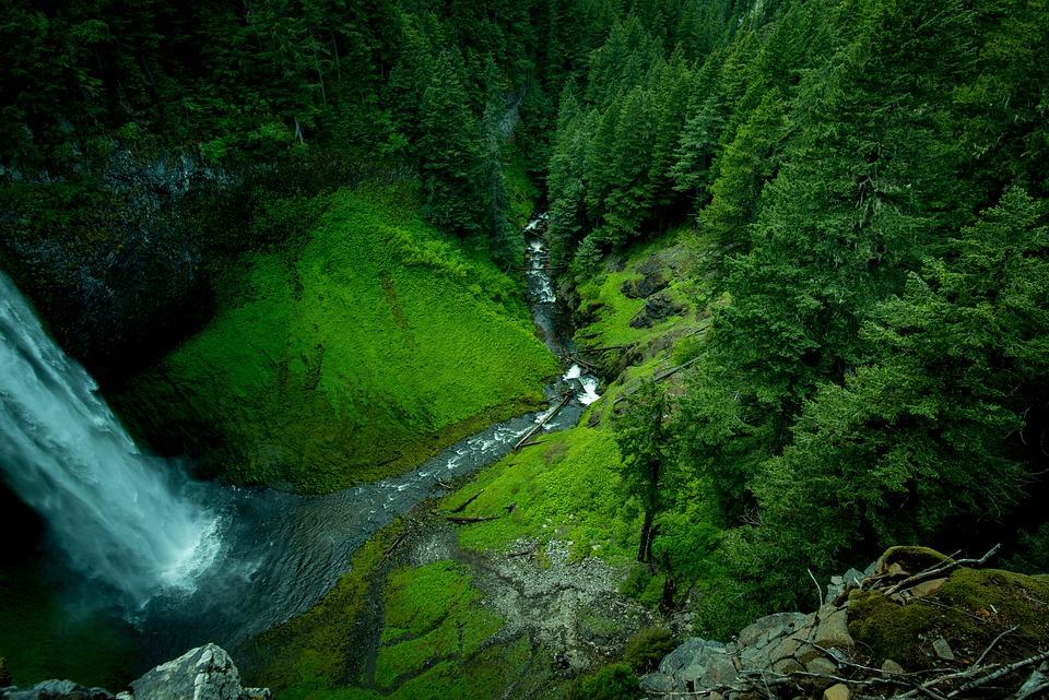 Creek, Waterfall, Landscape, Moss, Nature, Outdoors