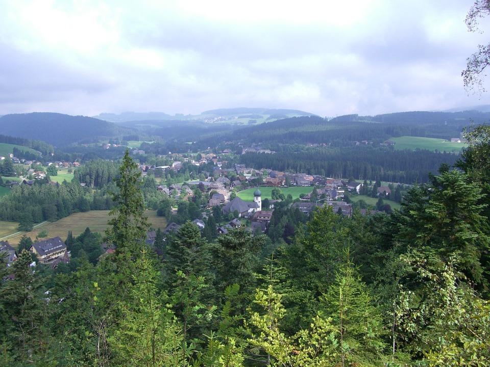 Hinterzarten, Black Forest, Outlook, Firs, Forests