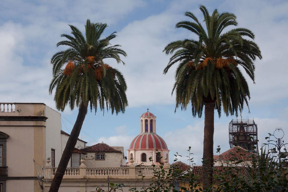 City, Church, Palm Trees, Architecture, Outlook, View