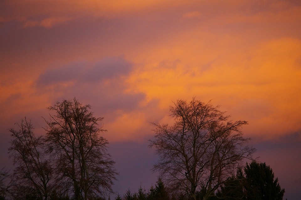 Austria, Morning, Sky, Clouds, Trees, Nature, Outside