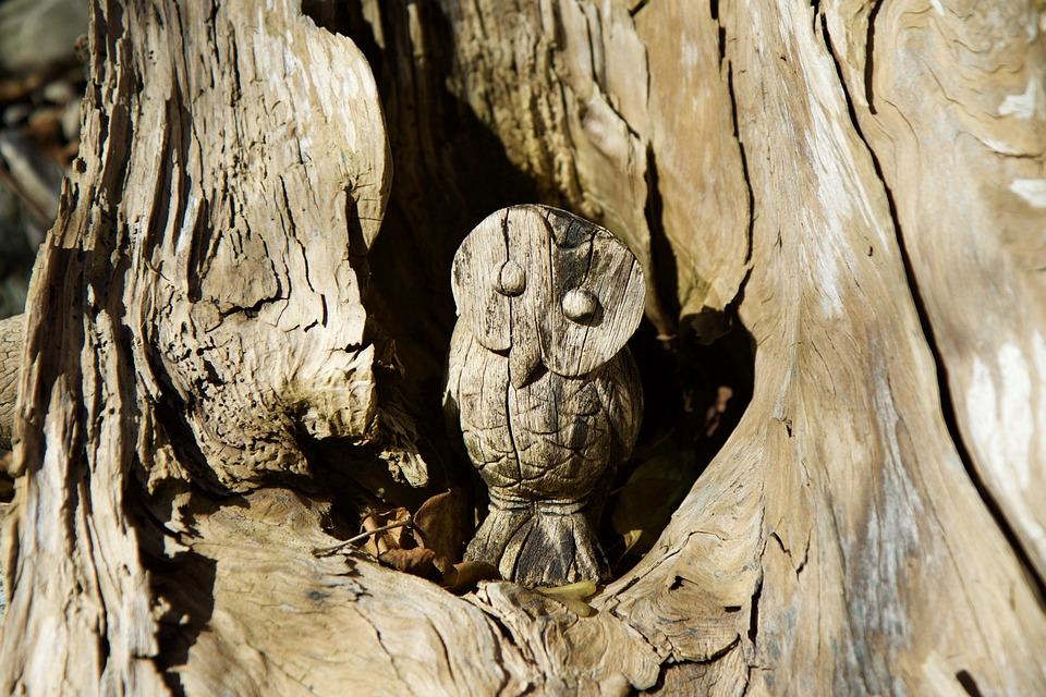 Free photo owl carving wood rhizome log max pixel