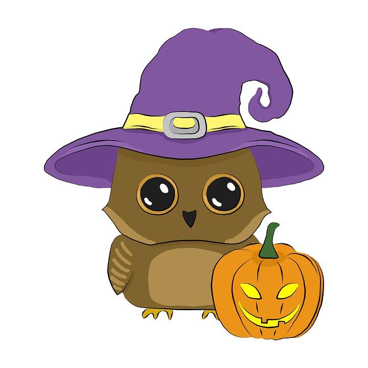 Owl, Halloween, Pumpkin, Witch Hat, Hat