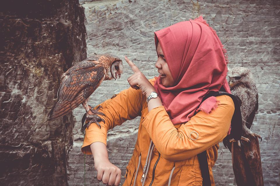 Animals, Owls, Avian, Birds, Girl, Perched, Person