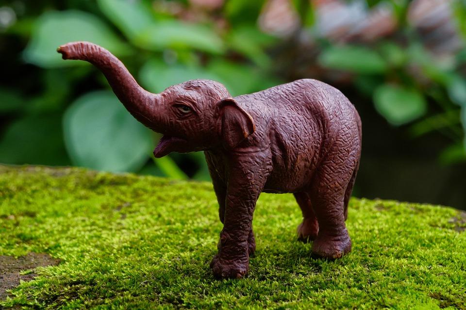 Jungle, Elephant, Pachyderm, Grass, Wild Animal, Toy