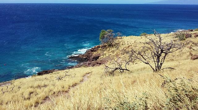 Maui, Hawaii, Beach, Landscape, Pacific, Blue, Water