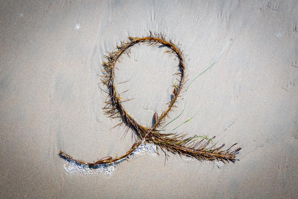 Sand, Algae, Sea, Beach, Nature, Plant, Pacific