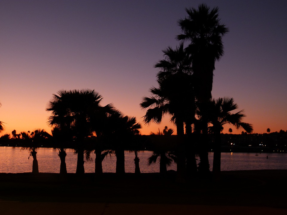 San Diego, Sunset, Palms, Water, Pacific, Usa