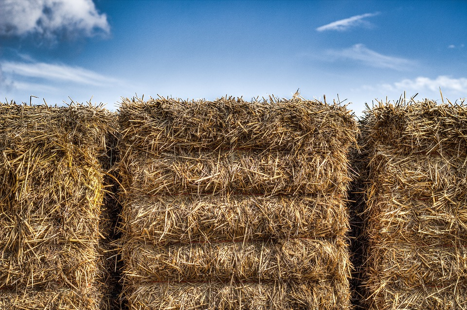 Straw, Packs Of Straw, Heaven, Hdr