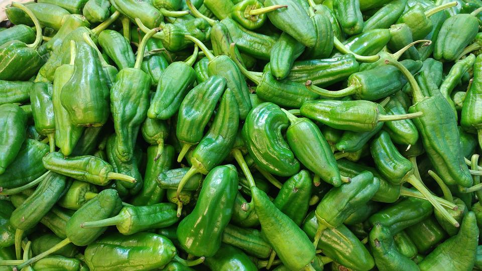 Padron, Peppers, Spanish, Green, Tapas
