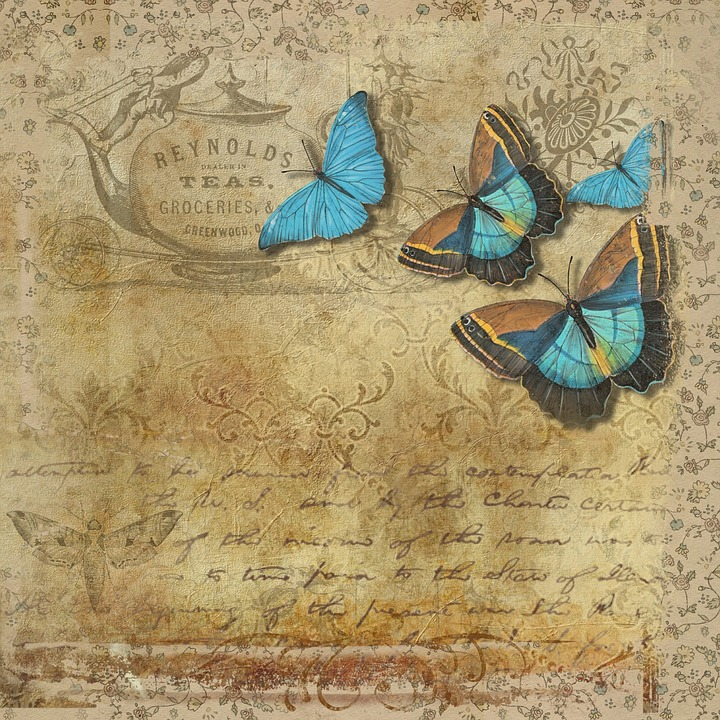 Butterfly, Vintage, Handwritten, Text, Page, Soft