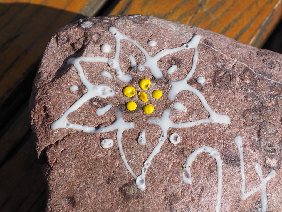 Edelweiss, Stone, White, Yellow, Painted, Logo, Dav