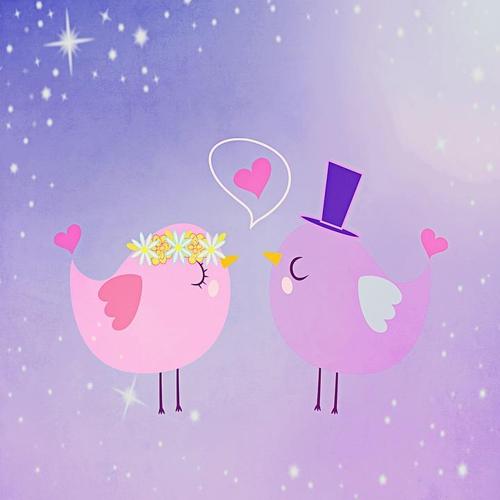 Bird, Background, Love, Pair, Lovers, Valentine's Day