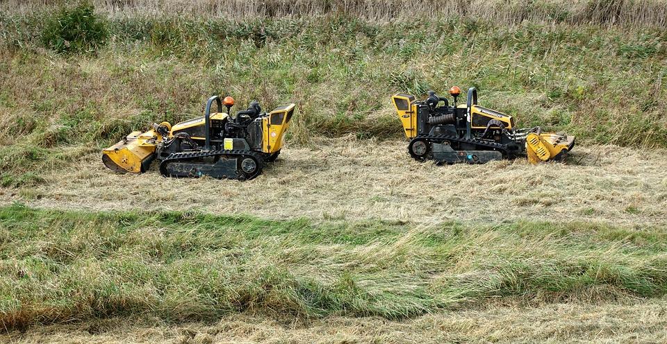 Lawnmower, Lawn, Mower, Grass, Cut, Cutting, Two, Pair